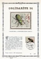 Feuillet Tirage Limité 400 Exemplaires 1740 Insecte Scarabée Virton - Panes