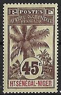 HAUT-SENEGAL-ET-NIGER N°12 N* - Unused Stamps