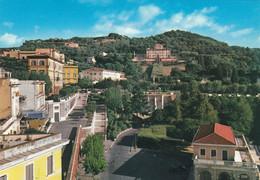 (M393) - FRASCATI (Roma) - Panorama - Unclassified