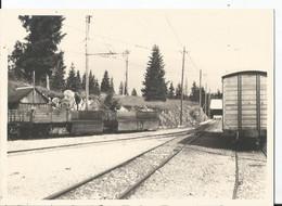 Grande Photo - Les Rousses  - 39 - Gare -  Jura  - Train -  Thème Chemin De Fer - Treni