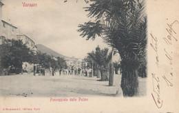 VARAZZE-SAVONA-PASSEGGIATA DELLE PALME-CARTOLINA ANIMATA- VIAGGIATA IL 23-7-1901 - Savona