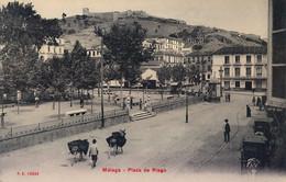 MALAGA  , T.P. NO CIRCULADA , PLAZA DE RIEGO - Málaga