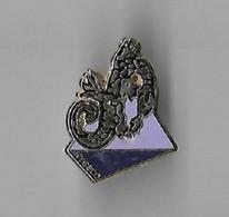 Pin's LEZARD HYGECO, Signe ARTHUS BERTRAND - Arthus Bertrand
