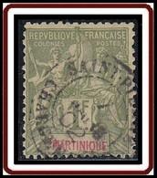 Martinique 1892-1906 - N° 43 (YT) N° 42 (AM) Oblitéré. - Used Stamps
