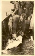 ÎLES FEROE - Carte Postale - Fiskimenn - Pécheurs à Bord D'un Bateau , éditeur De Tórshavn  - L 80041 - Faroe Islands