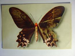 CPM PAPILLON - PAPILIO SEMPERI (MINDORO) - COMIE NATIONAL DE L'ENFANCE N°4 - Carte Vierge - DRAEGER - Butterfly - Dogs