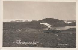 Norvege  Hardangervidda Med Jokelen Veien Haugastol Eidifjord - Norwegen