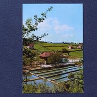 BUGOJNO RIBLJI RESTORAN BOSNA BOSNIA  Postcards Traveled 1977  (B1) - Bosnia And Herzegovina
