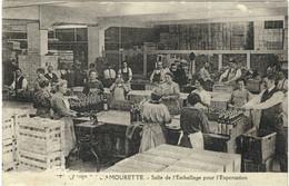 Les DISTILLERIES De L'AMOURETTE (Montreuil) - Salle De L'Emballage Pour L'Exportation - R/V - Montreuil