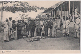 CONGO - Capture D'un Crocodile - VG Ethnic Group Etc - Sonstige