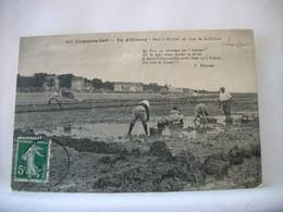 17 8082 CPA 1913 - 17 ILE D'OLERON. PARC A HUITRES EN FACE DE ST TROJAN - ANIMATION - Ile D'Oléron