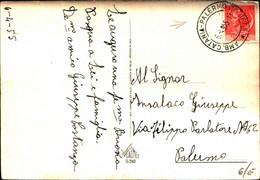 25192) ITALIA-CARTOLINA CON ANNULLO PALERMO 25 SEZ. B-AMBULANTE CATANIA 6-4-1955 - Vari