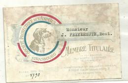 Societe Protectrice Des Animaux Strasbourg  Carte De Membre 1922 Freyermuth - Unclassified
