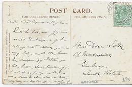3572  Postal Halesowen  1905, Uva - Briefe U. Dokumente