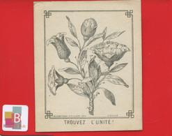 Chromo Image Devinette Circa 1900 Plante Fleur Rose Trouvez L' Unité Imp Lessertisseux - Sonstige