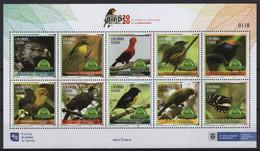 Colombia (2020) - MS - /  Butterflies - Birds - Risaralda Bird Festival - Butterflies