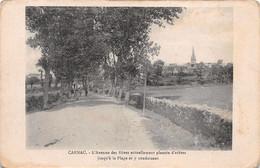 56-CARNAC-N°T2531-G/0015 - Carnac