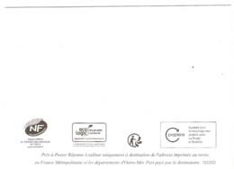 Lot 2 De 10 PAP YZ Yseult Entiers Postaux Neufs 251903 231832 212490 209296 209294 204637 196076 193325 183210 182202 - Prêts-à-poster:Answer/Ciappa-Kavena