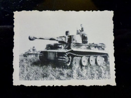 GERMAN Photo WW2 WWII ARCHIVE : Char Panzer ** TIGRE ** PANZERTRUPPEN - Guerra, Militares