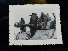 GERMAN Photo WW2 WWII ARCHIVE : Elite PANZER DIVISION Sur Char Panzer TIGRE - Guerra, Militares
