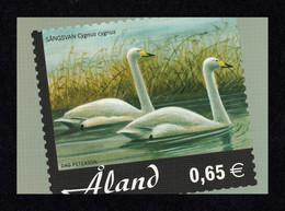 ÅLAND 2005 Birds/Whooper Swans: Postcard MINT/UNUSED - Aland