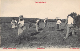 81 - DANS LE GAILLACOIS -la Fenaison - Agriculture -   (A021) - Unclassified