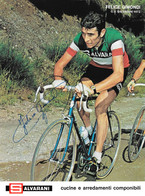 PHOTO CYCLISME RENFORCÉE DE HAUTE QUALITE FELICE GIMONDI 1972 FORMAT 18 X 24 - Radsport