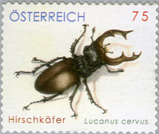 Austria 2007 MiNr. 2688 Österreich Insects BUGS Stag Beetle 1v MNH** 2.00 € - 2001-10 Unused Stamps