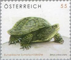 Austria 2006 MiNr. 2624 Österreich Reptiles Turtles European Pond Turtle 1v MNH** 2,50 € - 2001-10 Unused Stamps