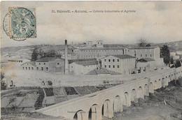 ANIANE ( Hérault ) :  Colonie Industrielle Et Agricole- Vue D'ensemble Des Batilments (1910 ) - Aniane