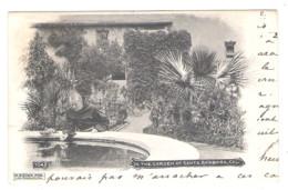 SANTA BARBARA - In The Garden - 1904 - - Santa Barbara