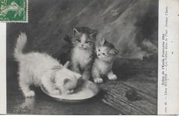 L54B065 - Salon De L'Ecole Française 1914 - Tableau De Léon Huber - Jeunes Chats - Les Pattes Dans Le Plat - DT N°7201 - Cats