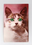 FANTAISIE - Carte Postale - Tête De Chat SONORE ( Petit Cri Quand On Pousse Sur Le Nez) Et  Avec Des Yeux En Perle (Y318 - Cats