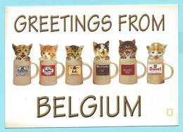 2260 - CATS AND BELGIUM BEERS - Cats