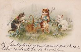 3 CHATS  ET LE PANIER FLEURI - Cats