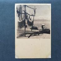 OHRID FISHERMEN MAKEDONIJA MACEDONIA, RIBARSKE MREŽE, Postcards Traveled 1948 (Y2) - Macedonia