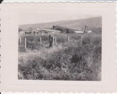974 - ILE DE LA REUNION - ST DENIS - AVION - AEROPORT DE GILLOT  - ROLAND GARROS - ANCIEN CLICHE - Plaatsen
