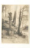 TRIER/Trèves (allemagne)  - Schusterkreuz/rocklsberg (photo En 1929, Format 11,3 Cm X 8,2cm) - Luoghi