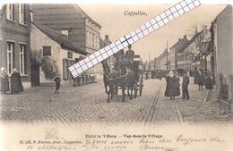 """CAPPELLEN-KAPELLEN """"ZICHT IN HET DORP-BEGRAFENISKOETS-VEEL VOLK""""HOELEN N°735 UITGIFTE 1903 TYPE 2 - Kapellen"""