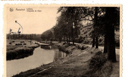 AARSCHOT - Leiberg - Chaussée De Diest - 1949 - Aarschot