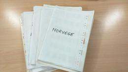 Lot N° TH 1208 PAYS NORDIQUE Obliteres Sur Page D'albums - Collezioni (in Album)