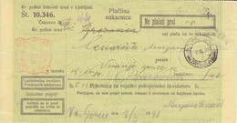 Slovenia SHS 1920 Postal Money Order Brezovica Pri Ljubljani Postage Due Provisory: Chainbreakers As Postage Dues!! - Slovenia