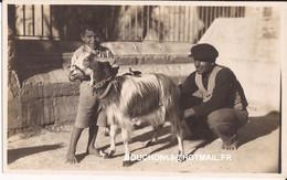 Malte Malta (probablement) La Traite Milk  Milking Goat Chevre - Malta