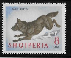 Albanie N°684 - Loup - Neufs ** Sans Charnière - TB - Albania