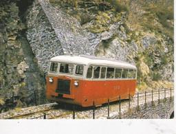 Carte Postale Amis Du Rail Du Forez Tramways De St Etienne CIE CFD Réseau De La Lozère, Autorail De Dion N° 204 - Bahnhöfe Mit Zügen