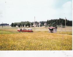 Carte Postale Amis Du Rail Du Forez Tramways De St Etienne CIE CFD Réseau Du Vivarais, Autorail Billard A 150-D1 Et Remo - Bahnhöfe Mit Zügen
