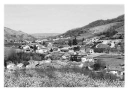 SAINT-ETIENNE-DE-VALOUX - Vue Panoramique - Otros Municipios