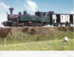 Carte Postale Amis Du Rail Du Forez Tramways De St Etienne CIE CFD Réseau Du Vivarais, Le Mallet SLM N° 403 FACS Tence - Bahnhöfe Mit Zügen