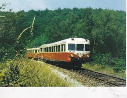 Carte Postale Amis Du Rail Du Forez: Ligne Firminy Dunières La Montée Vers Saint Pal (43) X2800 1969 - Estaciones Con Trenes