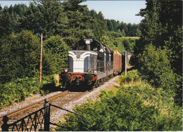 Carte Postale Amis Du Rail Du Forez: Ligne Firminy Dunières Entre Saint Pal Et St Didier BB 66197 UM (43) 1991 - Estaciones Con Trenes